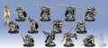 [Khador] - Iron Fang Pikemen/Black Dragons PLASTIC Unit w/ Attachment (12) BOX