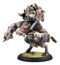 Hordes Minions: Splatter Boar Farrow Light Warbeast PLASTIC BOX