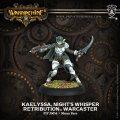 [Retribution] -  Kaelyssa, Night's Whisper Warcaster