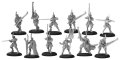 [Retribution] -  House Ellowuyr Swordsmen with Officer and Standard Unit (resin/metal) BOX ~ JUN 14 2017年6月14日発売