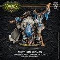 [Trollbloods] -  Northkin Shaman Trollkin Solo (resin/metal)