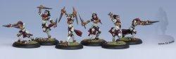 画像1: [Menoth] - Unit Box - Daughters of the Flame(6)